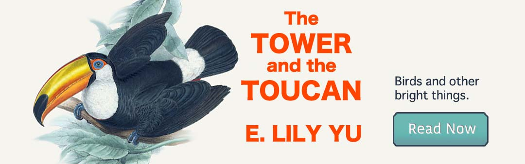 The Tower and the Toucan by E. Lily Yu