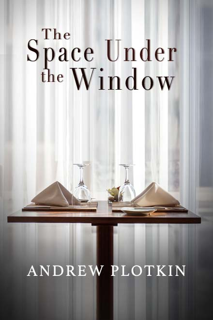 Space Under the Window Andrew Plotkin cover sub-Q