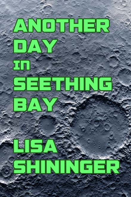 Another Day in Seething Bay by Lisa Shininger cover sub-Q